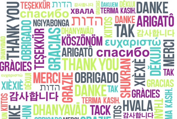 Multilenguaje en DNN